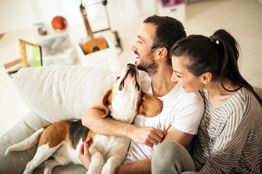 Happy family Photograph by AleksandarNakic