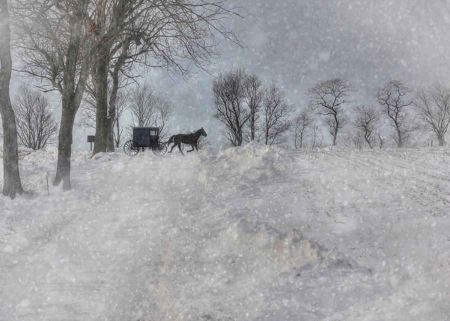 Winter Photograph - Happy Holidays From Pa by Lori Deiter
