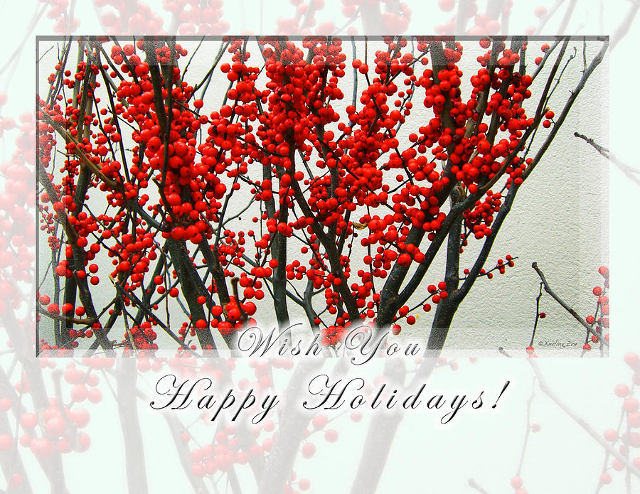 Christmas Photograph - Happy Holidays by Xueling Zou