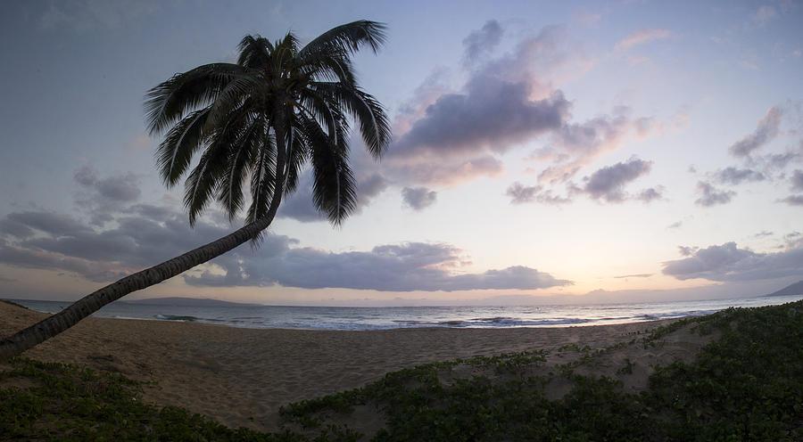 Hawaii Photograph - Happy Hour by Brad Scott