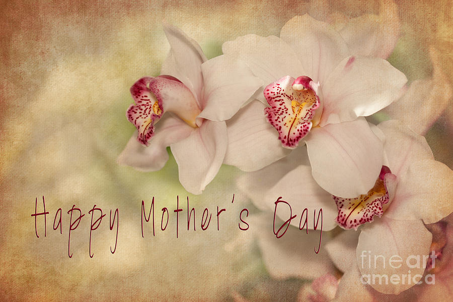 Card Photograph - Happy Mothers Day by Beve Brown-Clark Photography