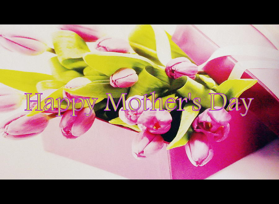 Tulips Photograph - Happy Mothers Day by The Creative Minds Art and Photography