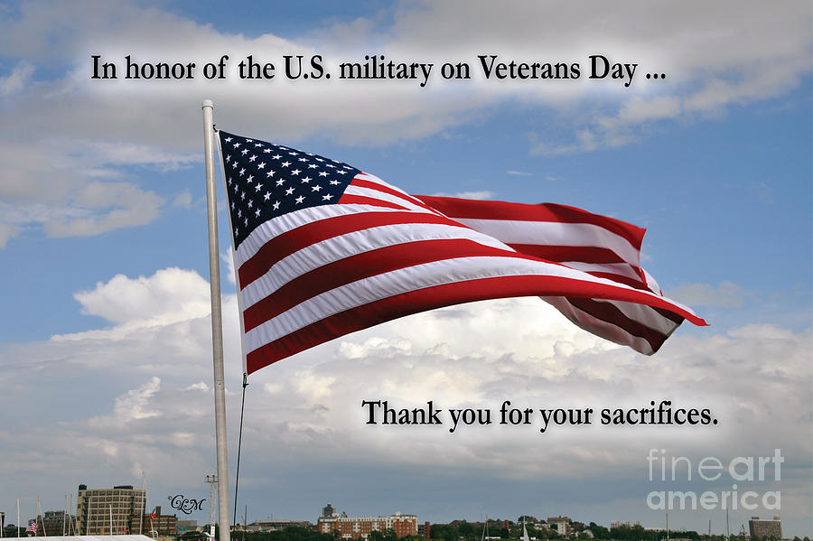 Veteran's Day Photograph - Happy Veterans Day by Cheryl McClure