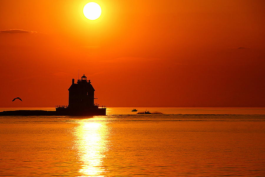 Harbor Cruise Photograph by Robert Bodnar