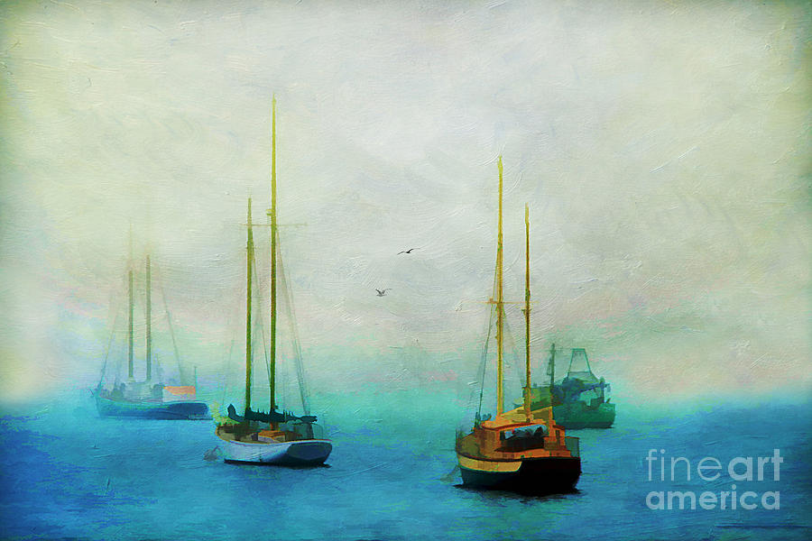 Acadia Photograph - Harbor Fog by Darren Fisher