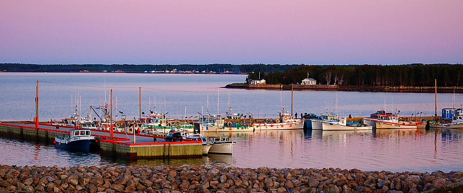 Harbour Photograph - Harbour Sunset by Ron Haist