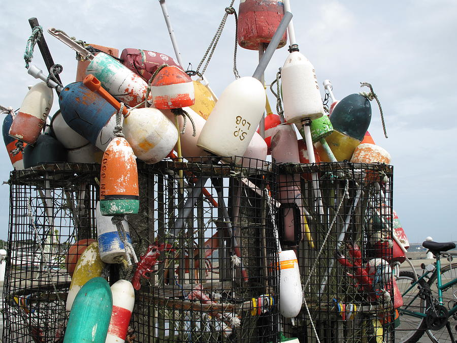 Buoys Photograph - Hard Working Buoys by Barbara McDevitt