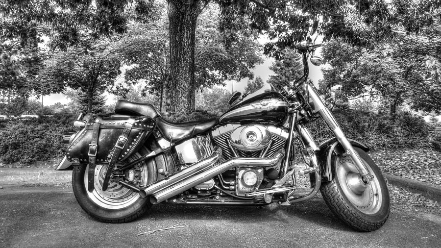 Digital Art Photograph - Harley D. Iron Horse by Sergio Aguayo