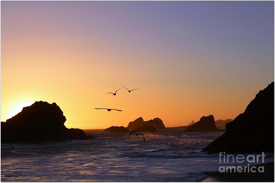 Ocean Digital Art - Harris Beach State Park by Irina Hays