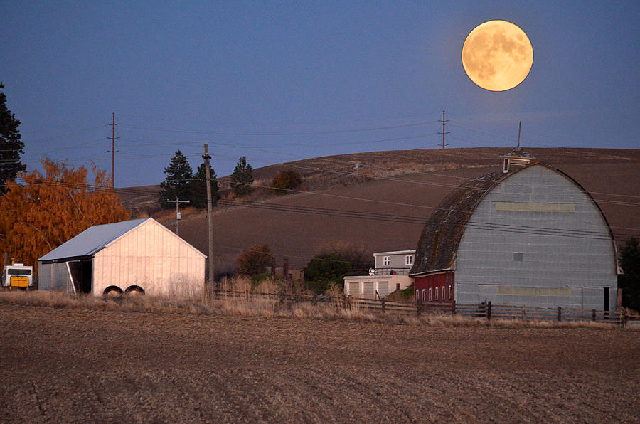 Harvest Moon 2013 by Francisco Aguilar