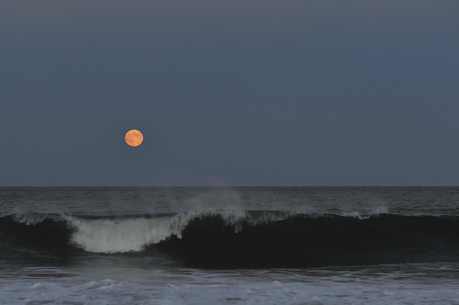 Harvest Moon Photograph - Harvest Moon Seaside Park Nj by Terry DeLuco