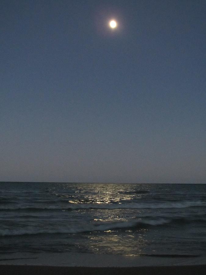 Blue Photograph - Harvest Moonrise by Denise   Hoff