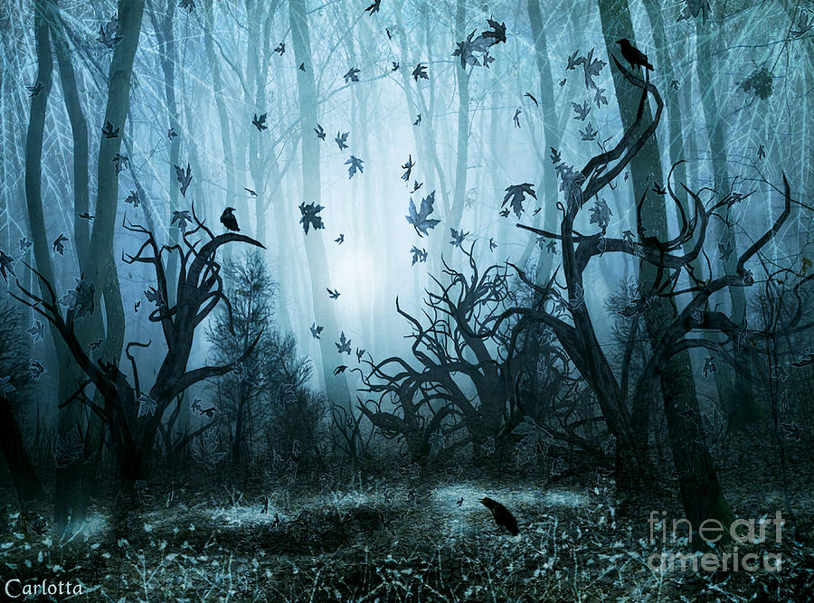 Haunted Forest Digital Art By Carlotta Ceawlin