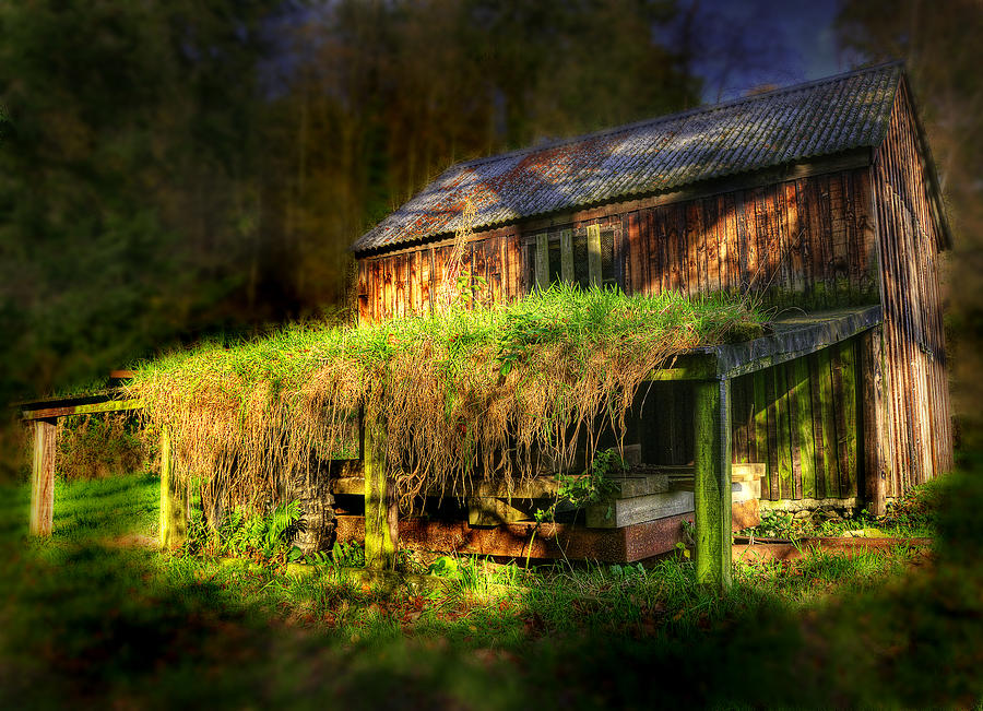 Ancient Photograph - Haunted House by Svetlana Sewell