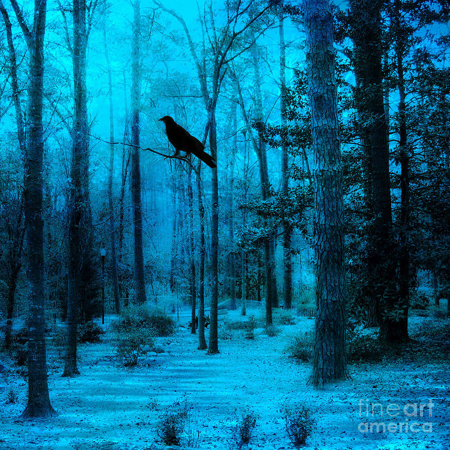 Haunting Dark Blue Surreal Woodlands With Crow  Photograph by Kathy Fornal