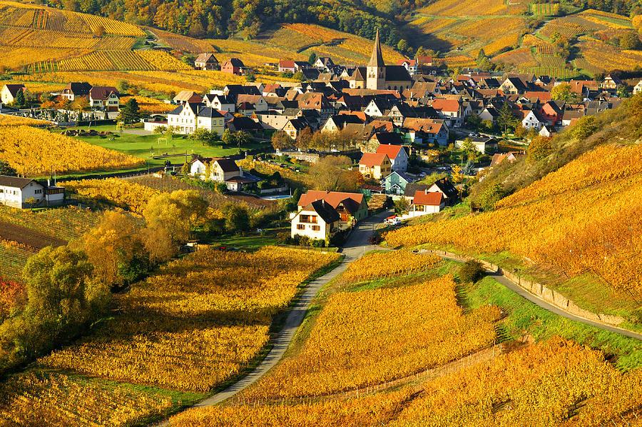 France Photograph - Haut Rhin by John Galbo