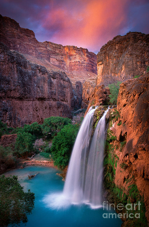 America Photograph - Havasu Falls by Inge Johnsson