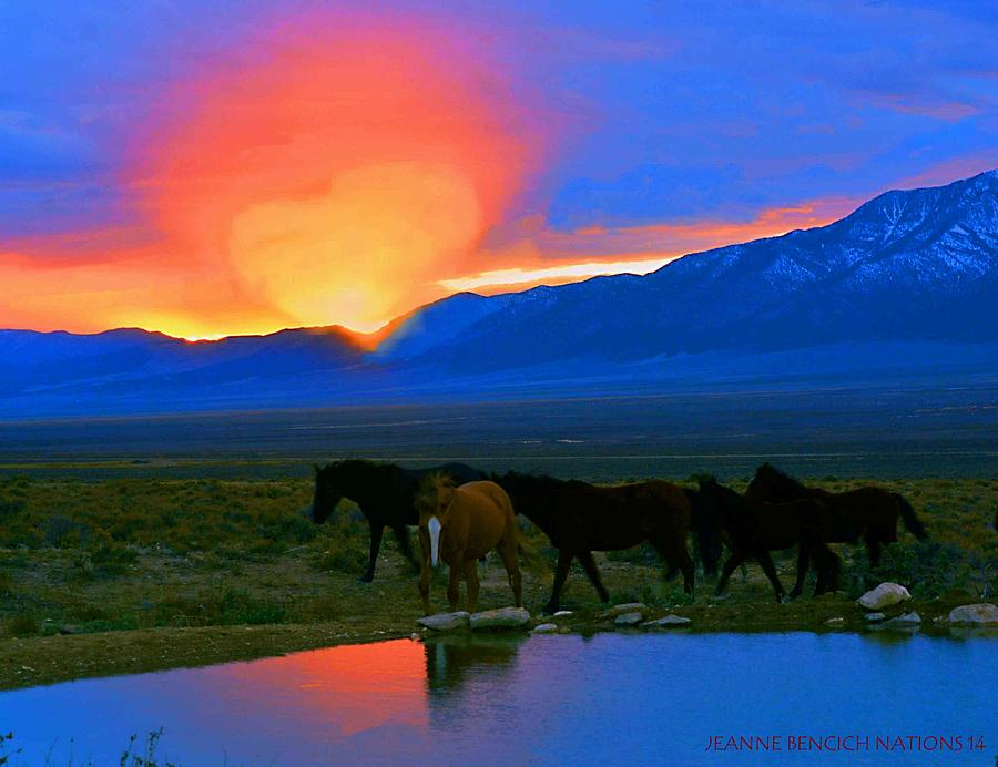 West Photograph - Have A Heart For Wild Horses  by Jeanne  Bencich-Nations