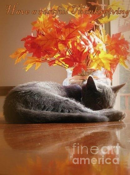 Restful Mixed Media - Have A Restful Thanksgiving by Jennifer E Doll