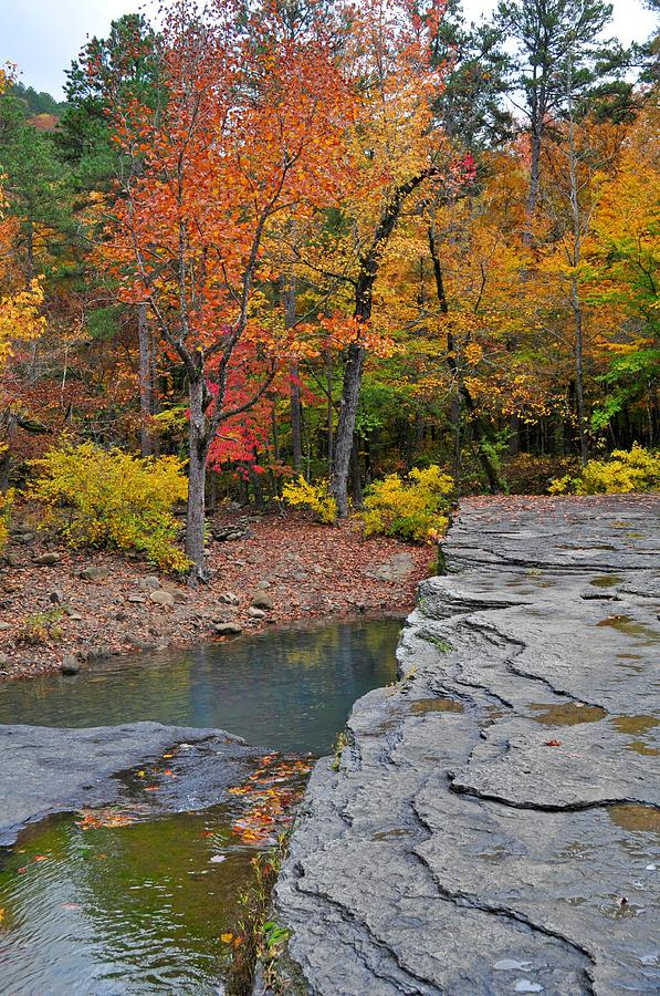 Haw Creek Photograph - Haw Creek Fall 2 by Marty Koch