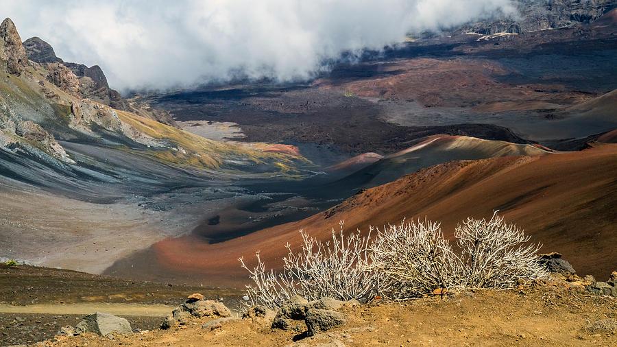 Maui Photograph - Hawaii Volcano Landscape by Pierre Leclerc Photography
