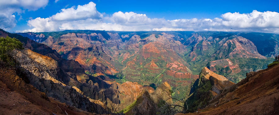 Canyon Photograph - Hawaiian Grand Canyon by Paul Johnson