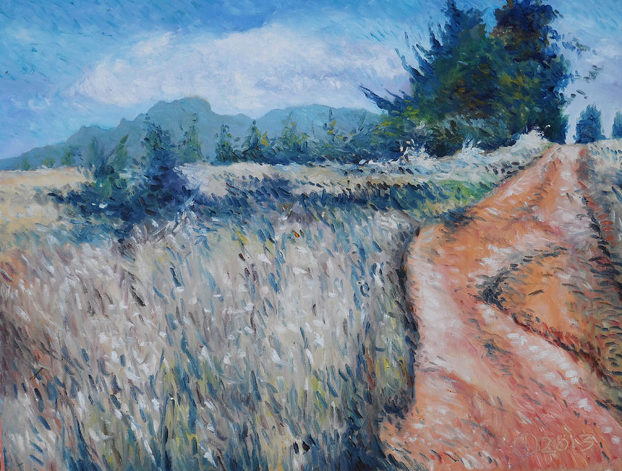 Impressionism Painting - Hawequa Mountains Diemersfontein Cape Town South Africa by Enver Larney