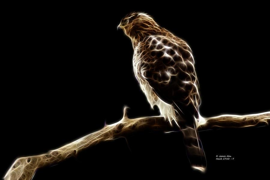 Hawk Digital Art - Hawk -  2950 - F by James Ahn
