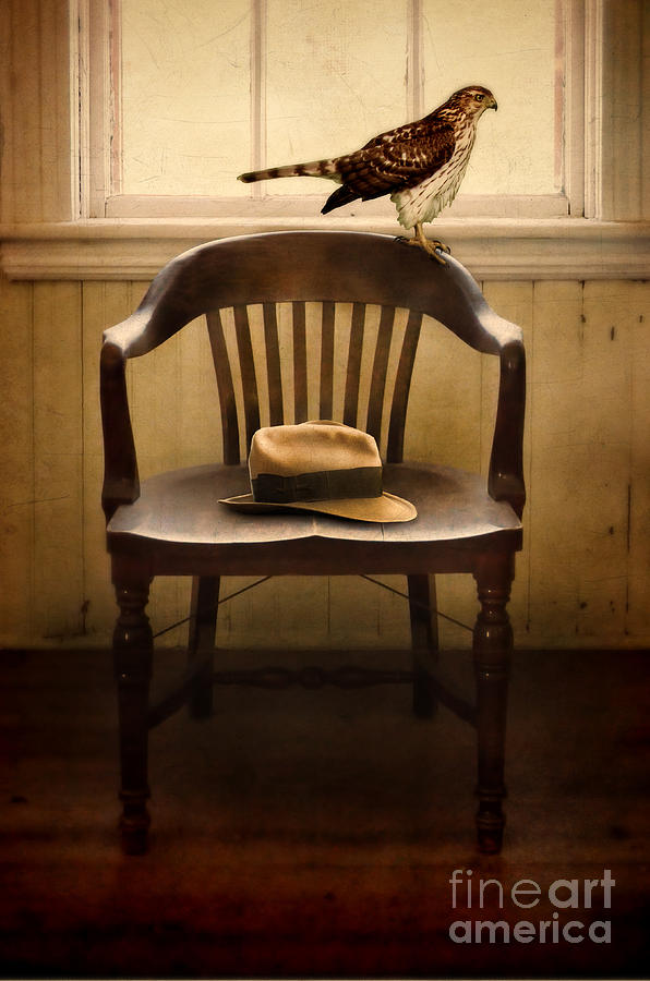 Hawk Photograph - Hawk And Fedora On Chair by Jill Battaglia