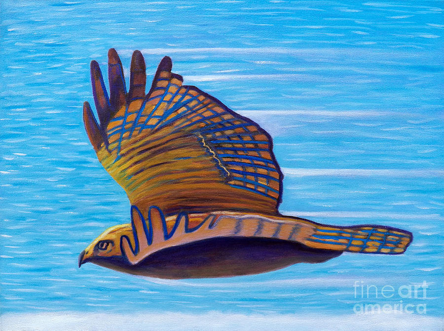 Hawk Painting - Hawk Speed by Brian  Commerford