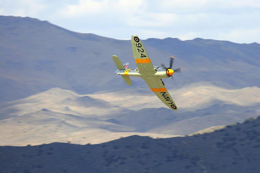 Hawker Sea Fury T Mk.20 At Reno Air Races Photograph by John King