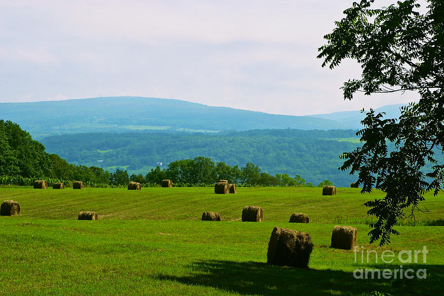 Finger Lakes Photograph - Hay Bails by William Norton