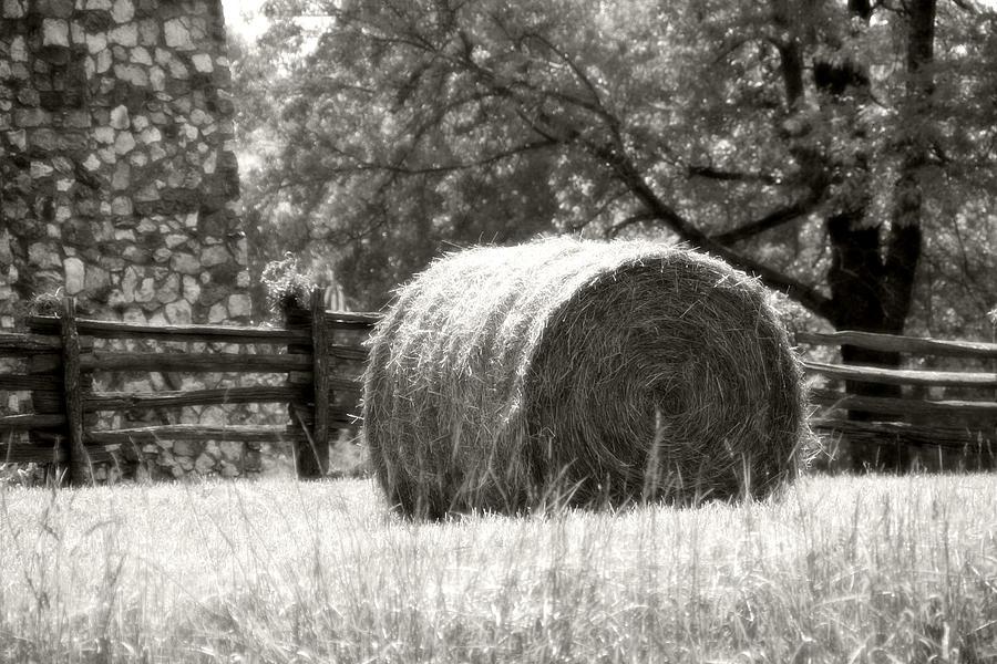 Farm Photograph - Hay Bale In A Farm Field by Heather Allen