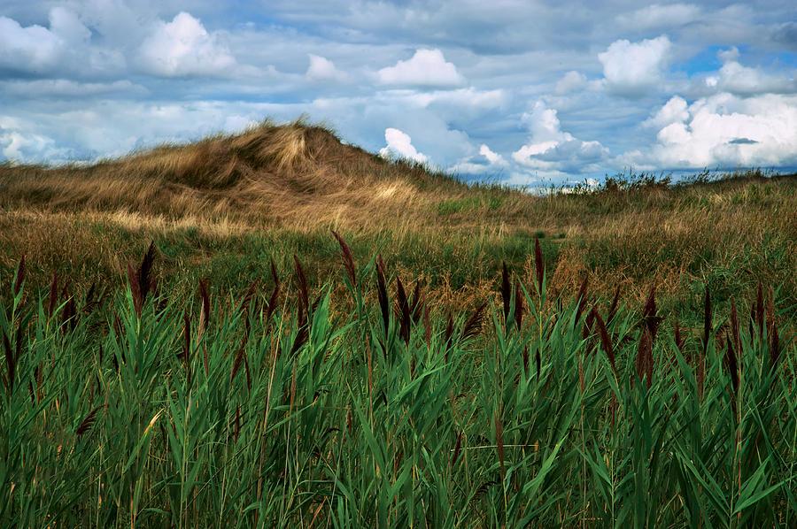 Grass Photograph - Hay Mound by Mike Feraco