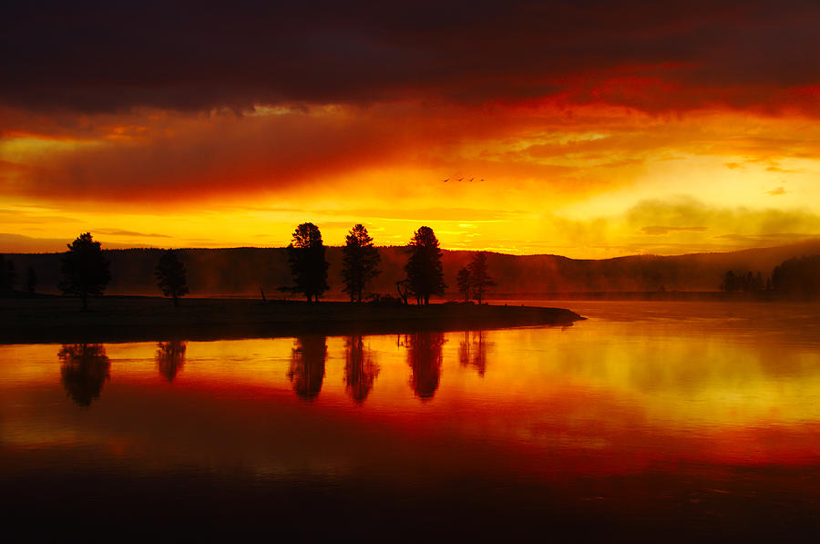Hayden Valley Sunrise by Tranquil Light  Photography