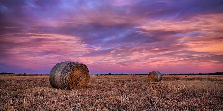 Kansas Photograph - Hayseed by Thomas Zimmerman