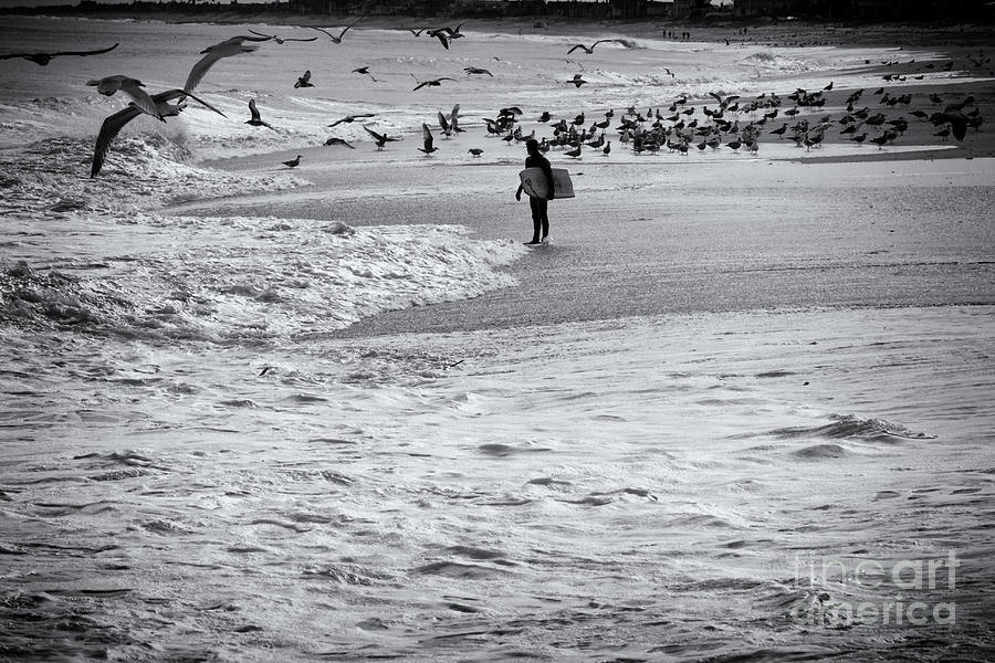Ocean photograph hdr black white bw beach ocean seascape birds seagulls photography photo picture surfer