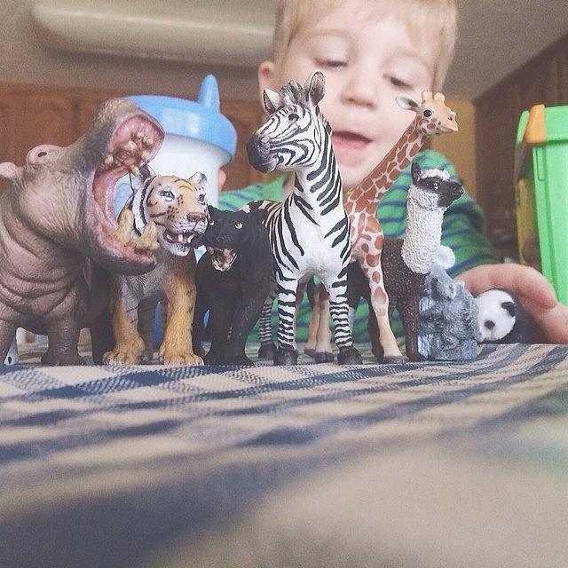 He Got New Zoo Friends From Nana&poppy Photograph by Liz Behm