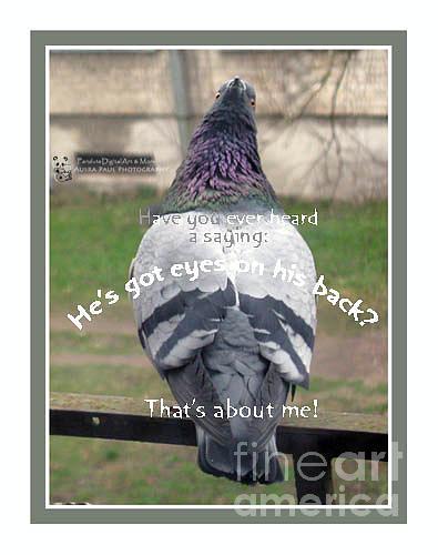 Creative Photograph - He Has Got Eyes On His Back by Ausra Huntington nee Paulauskaite