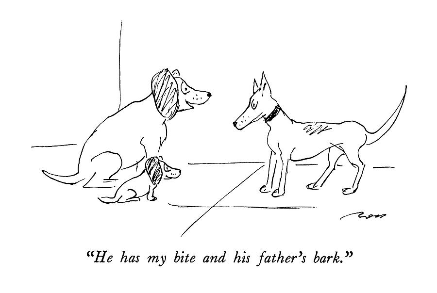 He Has My Bite And His Fathers Bark Drawing by Al Ross
