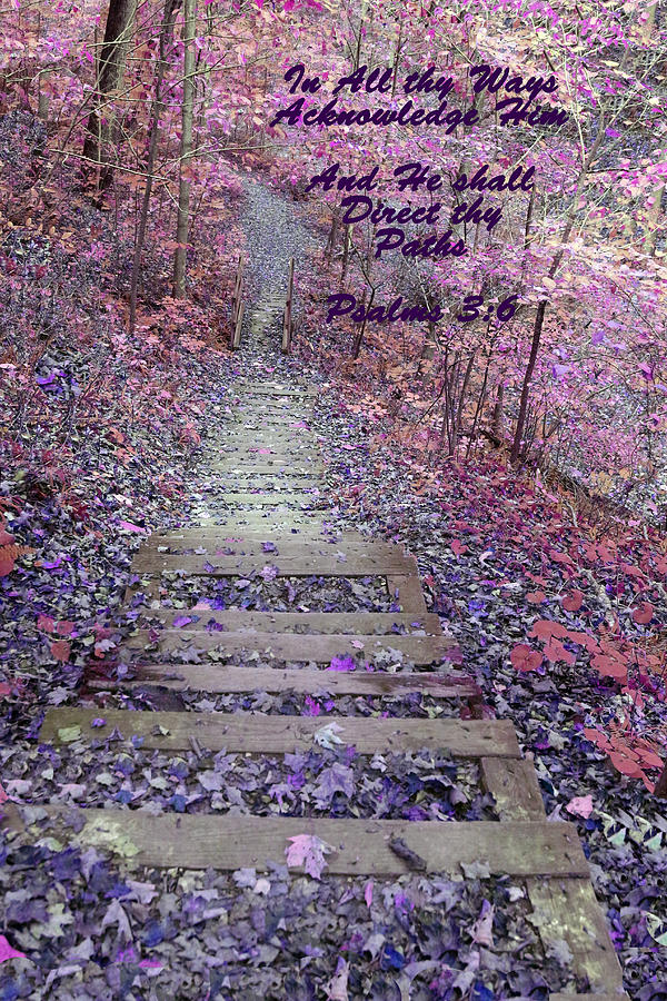Nature Photograph - He Will Direct My Path by Lorna Rogers Photography