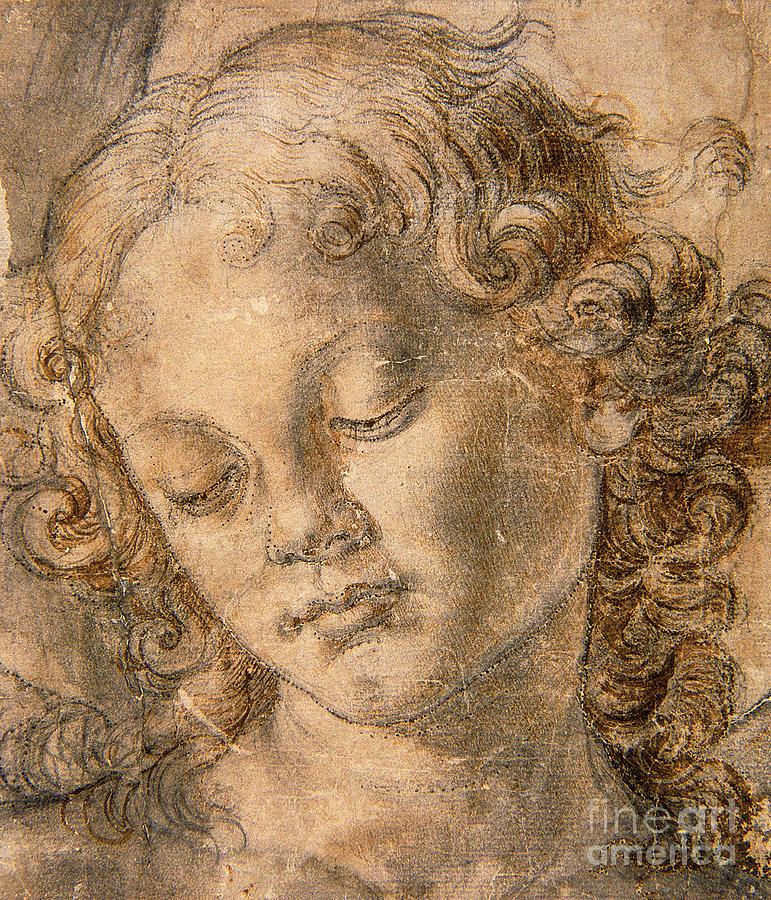 Andrea Del Verrocchio Paintings
