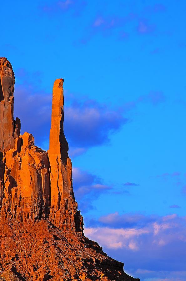 Monument Photograph - Head Of Condor by Viktor Savchenko