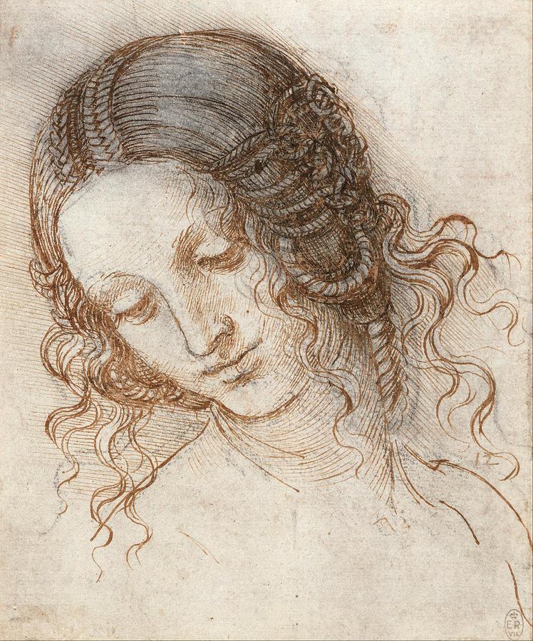 Leonardo Da Vinci Drawing - Head Of Leda by Leonardo da Vinci