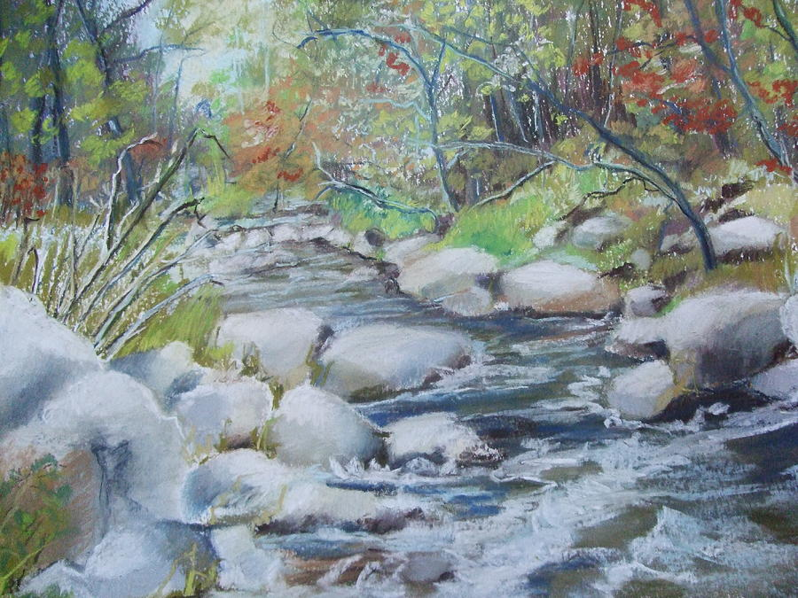 Head Waters on the James River by Janet Visser