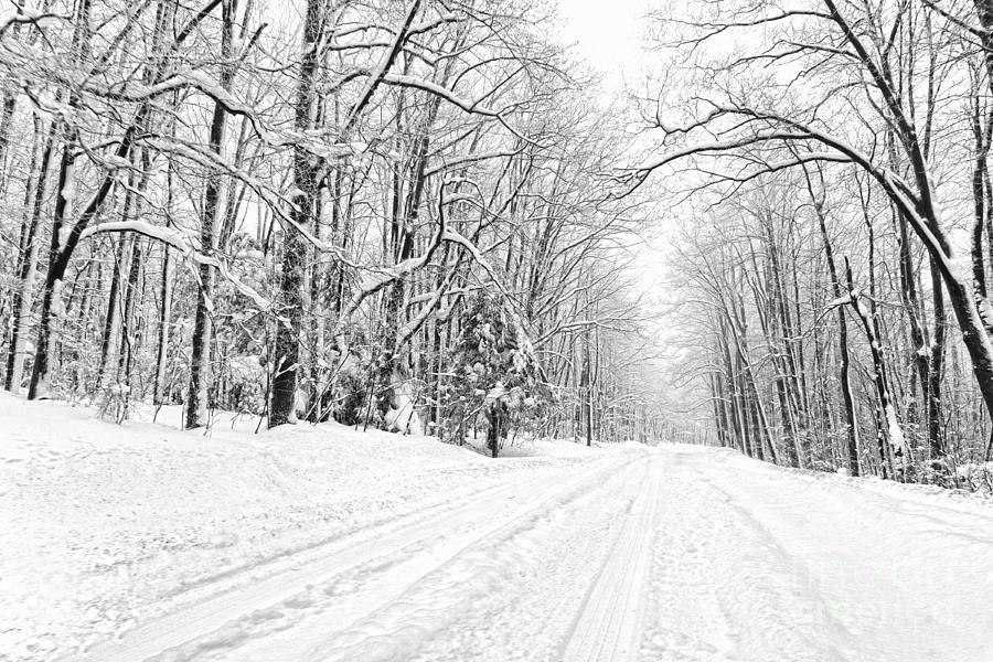 Snow Scenes Photograph - Heading For Davis West Virginia After Snow Storm by Dan Friend