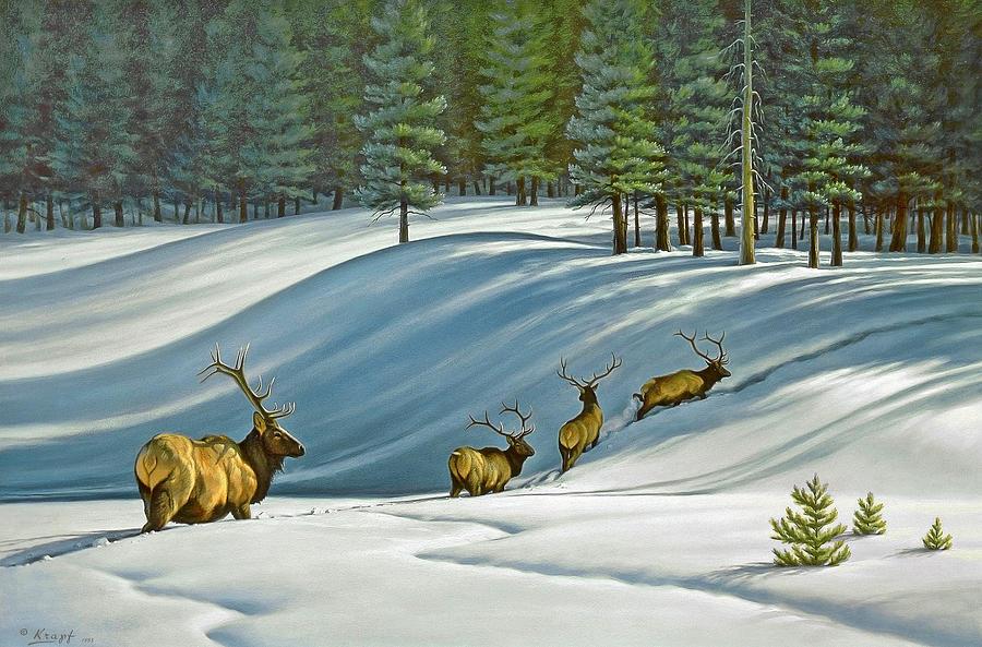 Wildlife Painting - Heading For Timber - Elk by Paul Krapf