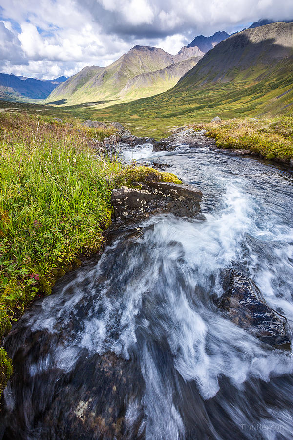 Headwaters Photograph - Headwaters by Tim Newton