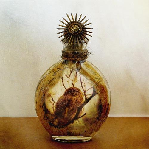 Bottle Glass Art - Healing Bottle - Owl by Yuko Ishii