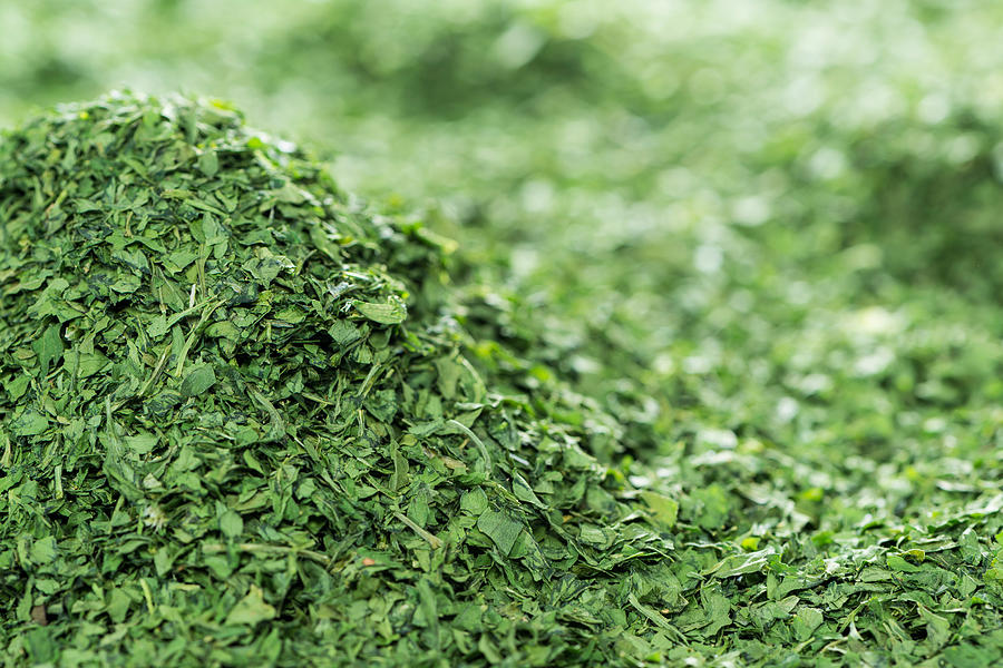 Heap Of Dried Parsley Photograph